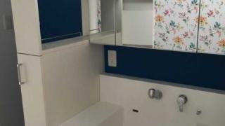 サンワカンパニーの洗面台が便利